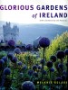 ECLARE, MELANIE : Glorious Gardens of Ireland / Kyle Cathie, 1999