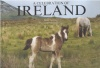 ANDERSON, JANICE : A Celebration of Ireland / Chartwell Books, 2008