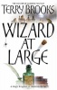BROOKS, TERRY : Wizard At Large / Orbit, 2007